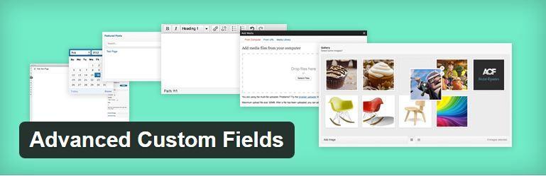 advanced-custom-fields-wordpress-lisaosa